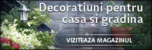 Decoratiuni pentru clasa si gradina